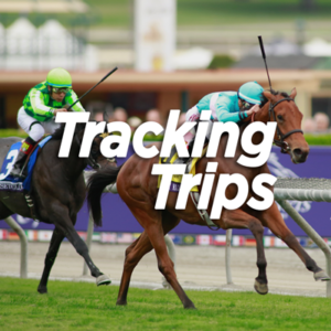 Tracking Trips